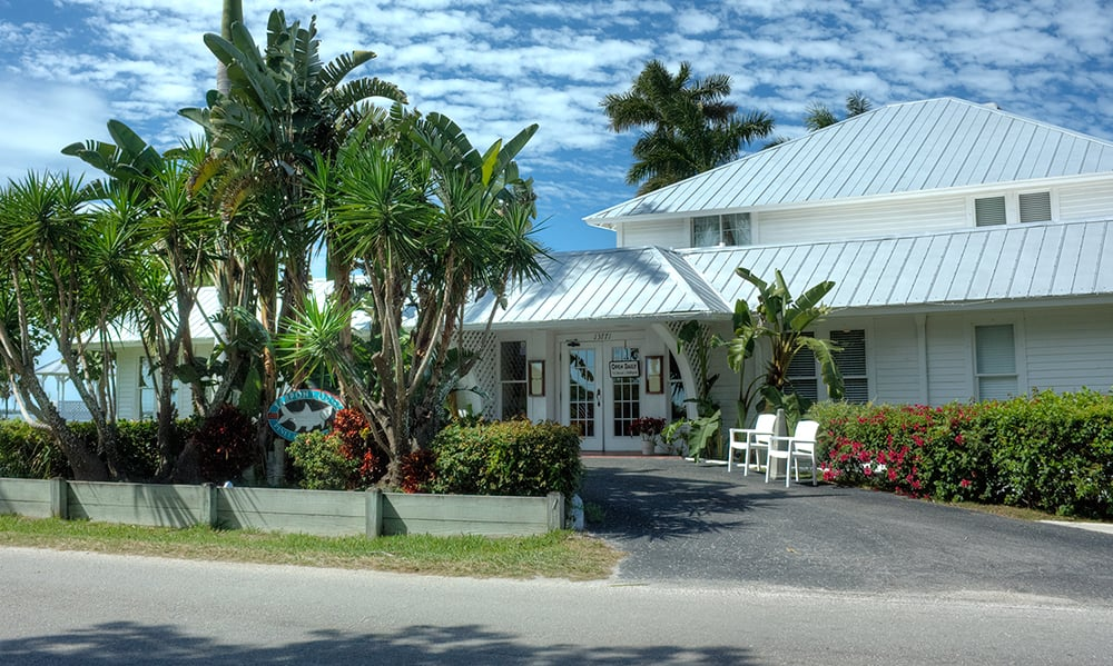 Little Pine Restaurant Review