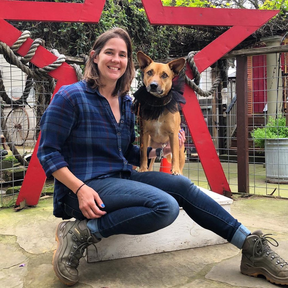 Urban Dogs And Cats: Cambria, CA