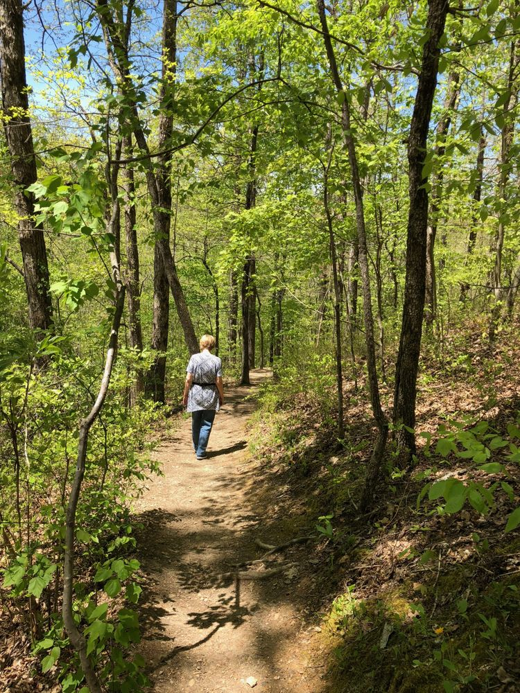 Stillhouse Hollow Falls Trail: Stillhouse Hollow Falls Trl, Mount Pleasant, TN