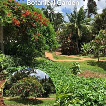 National Tropical Botanical Garden - 229 Photos & 26 Reviews ...