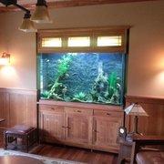 Lovely Custom Aquarium By Photo Of Living Art Aquatics   Cary, IL, United States.