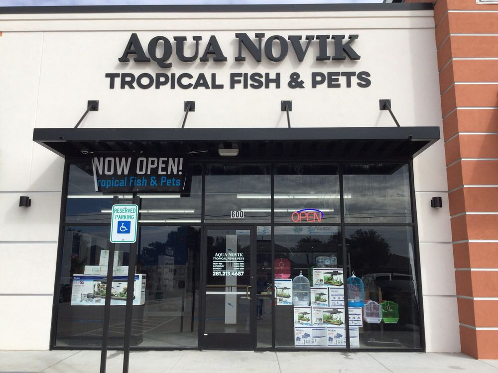 New local fish and pets store variety of fish and pets for Local fish store