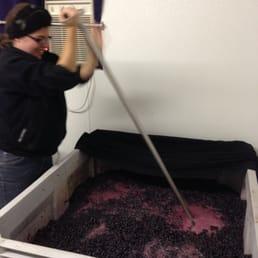 Photo of Major Creek Cellars - White Salmon WA United States. A wine & Major Creek Cellars - 14 Photos - Wineries - 306 Bates Rd White ...
