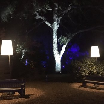 Enchanted forest of light at descanso gardens 1176 - Descanso gardens enchanted forest of light ...