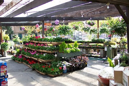 Dennis 7 Dees Landscaping Garden Center 10455 Sw Butner Rd Portland Or Nurseries Mapquest