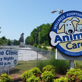Greenville County Animal Care - 15 Reviews - Animal Shelters