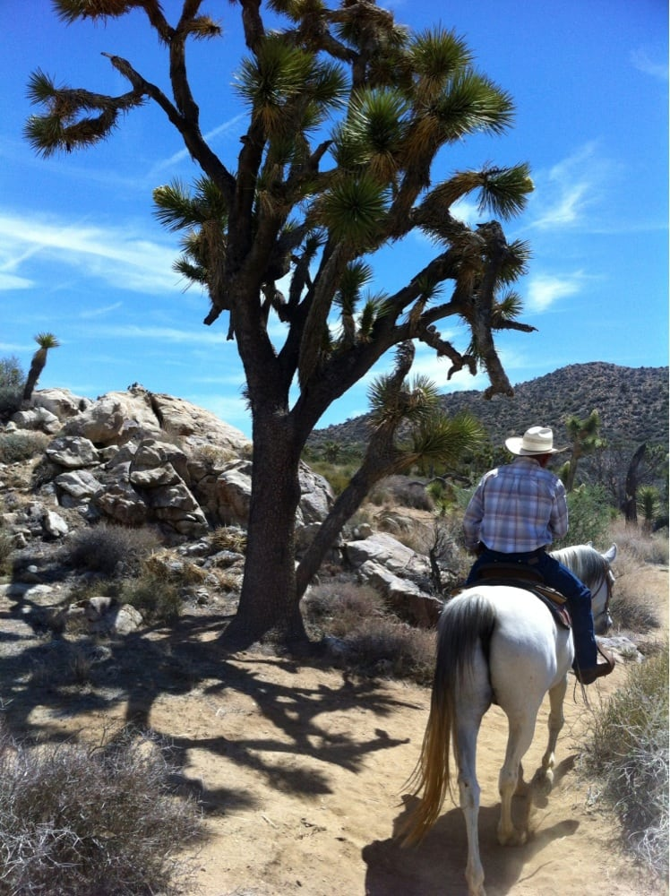 Hotels In Yucca Valley Ca