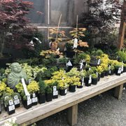 Photo Of Sunnyside Nursery Marysville Wa United States