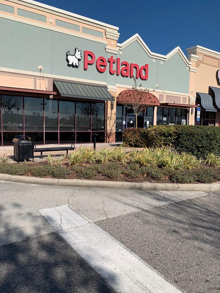 Petland Orlando East: 453 N Alafaya Trail, Orlando, FL