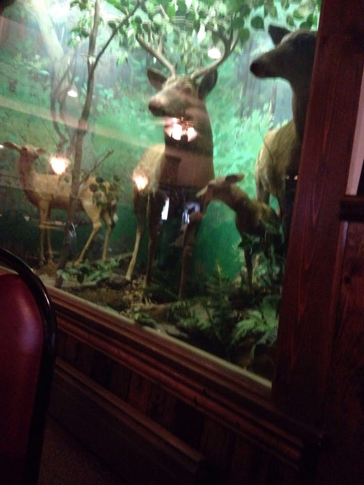 Morris Tavern: 478 Locust St, Sidman, PA