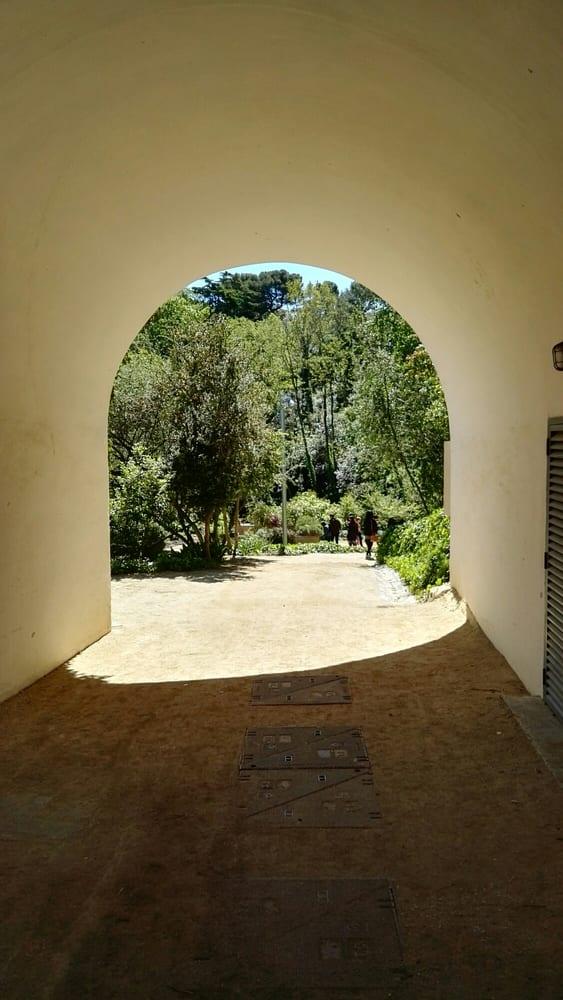 Jard Bot Nic De Barcelona 87 Photos 10 Reviews Botanical Gardens Montju C Barcelona