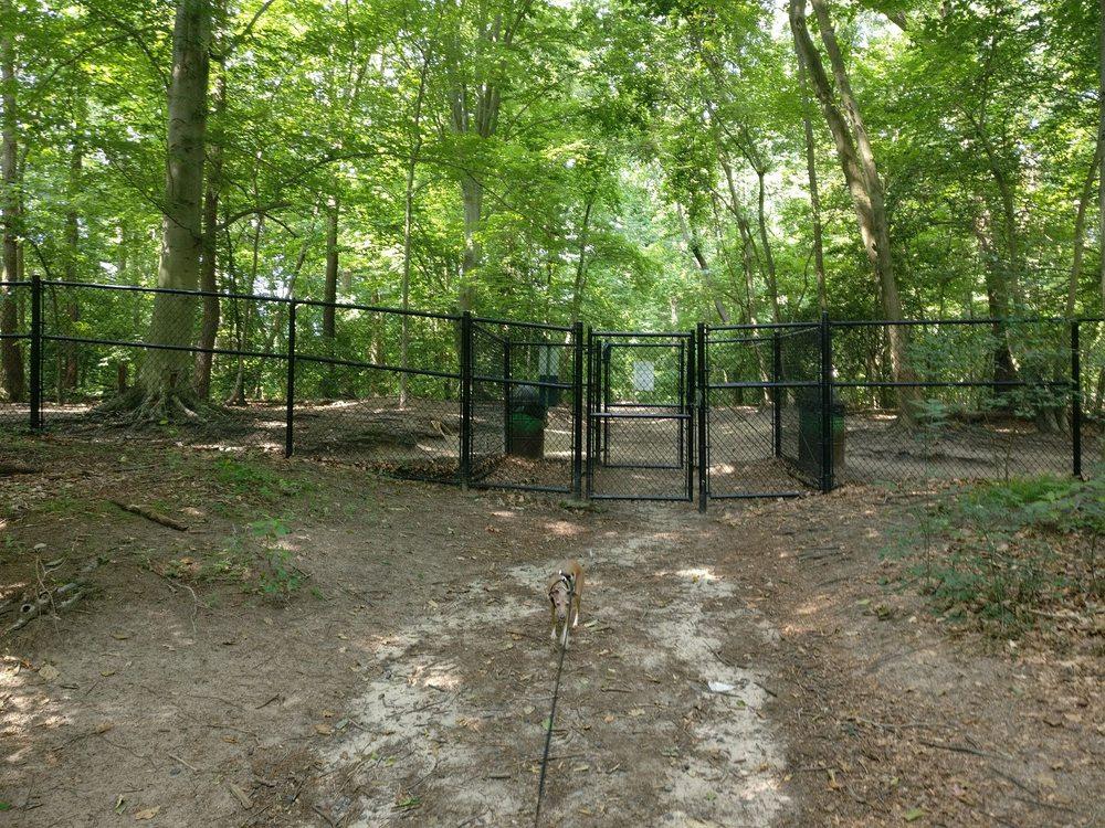 timber creek dog park