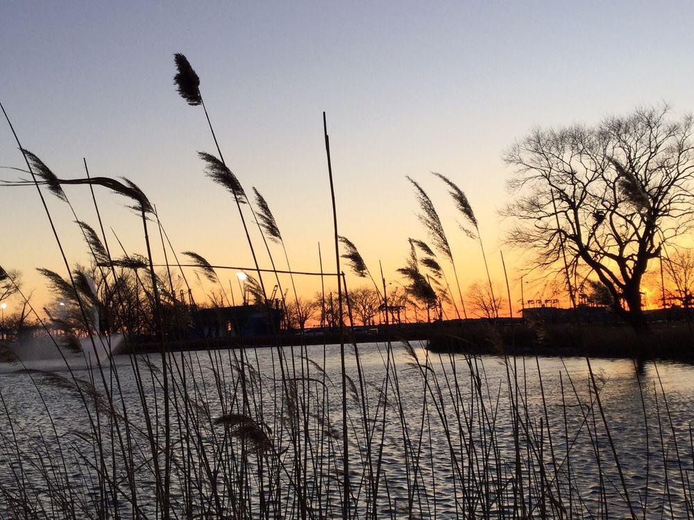 Photo of Bayonne County Park: Bayonne, NJ