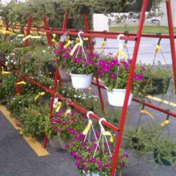 Houston garden centers 17 photos 18 reviews garden centres 10939 katy fwy memorial Houston garden centers houston tx