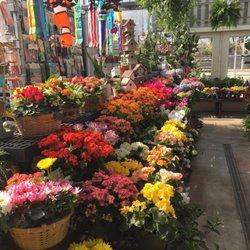 Photo of Ted & Debbie's Flower Garden - Tulsa, OK, United States