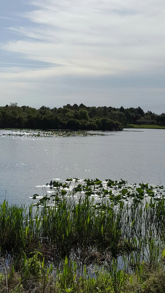 Walsingham Park: 12620 102nd Ave, Largo, FL