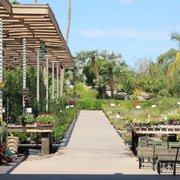 Photo Of Treeland Nurseries Mesa Az United States