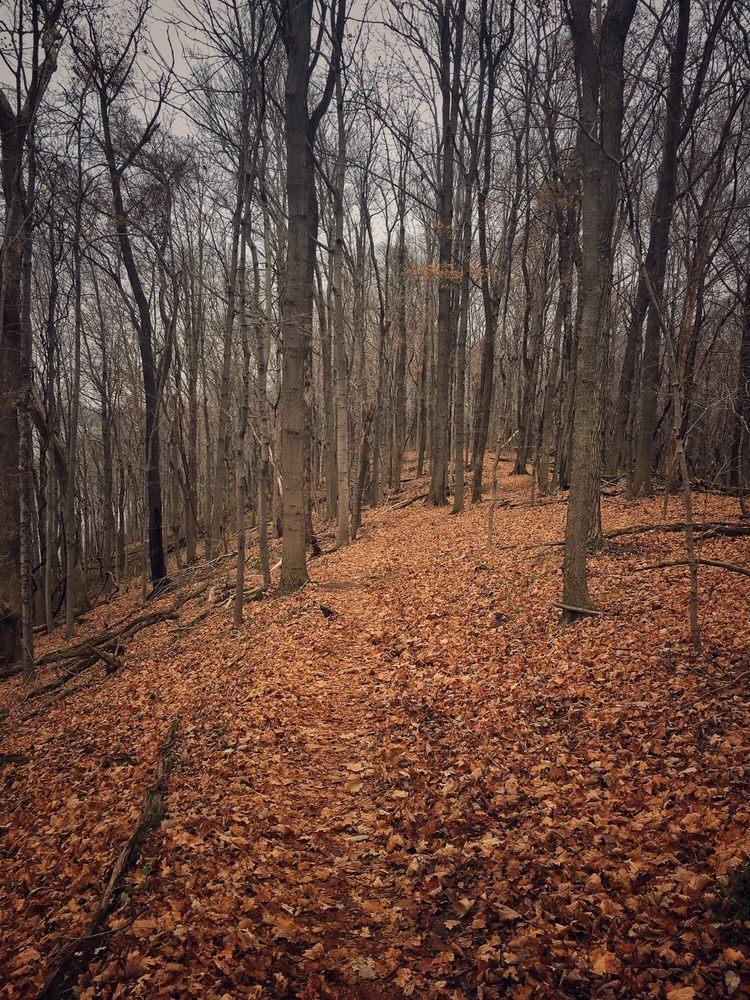East Fork State Park: 3294 Elklick Rd, Bethel, OH
