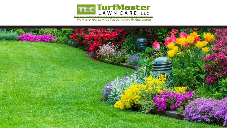 TLC TurfMaster Lawn Care - Landscaping - 750 Medel Marconi ...