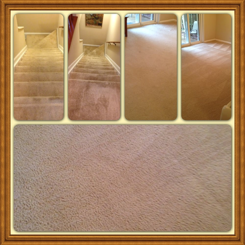 Organic Dry Carpet Cleaning 16 Photos Carpet Cleaning