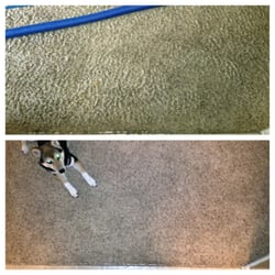 Sonya S Carpet And Air Duct Cleaning 10 Reviews Carpet