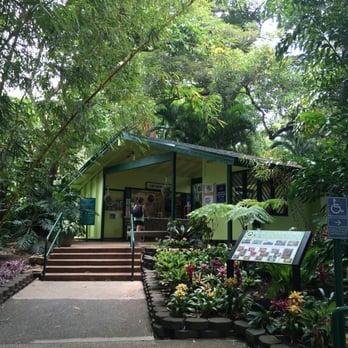 Foster botanical garden 941 photos 109 reviews botanical gardens 180 n vineyard blvd for Foster botanical garden honolulu