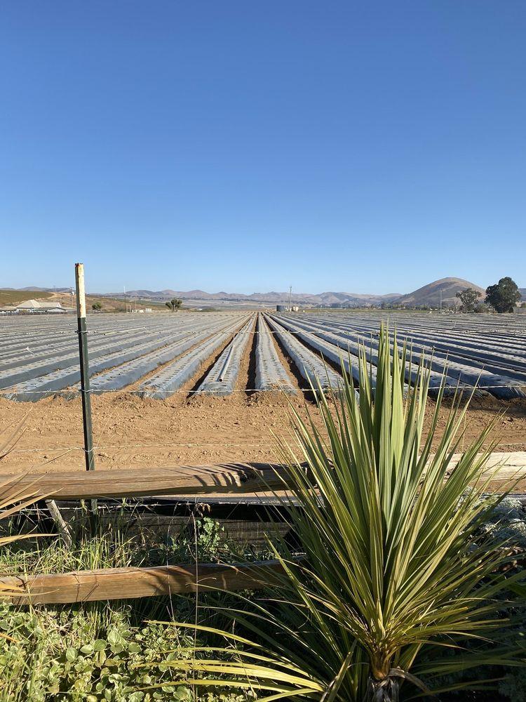 The Club At Crazy Horse Ranch: 475 San Juan Grade Rd, Salinas, CA