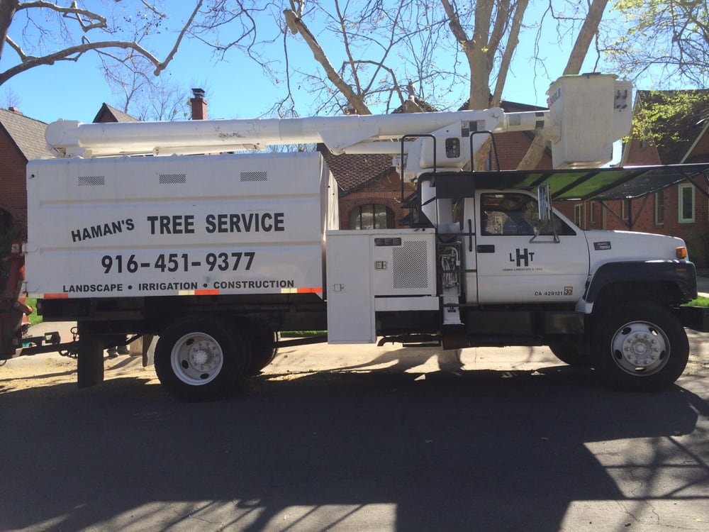 Haman Landscape and Tree Service