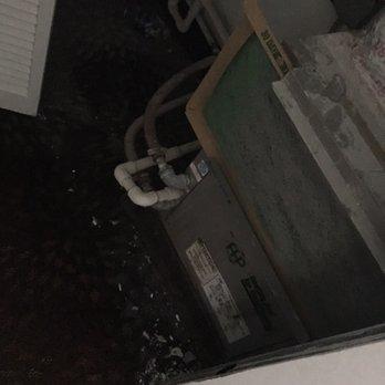 Seagull Hotel Miami Beach Phone Number