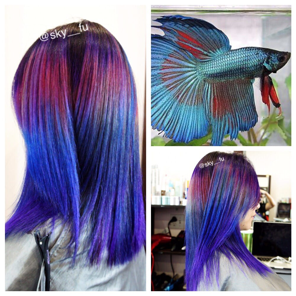 Let's play color , color melt style - Yelp