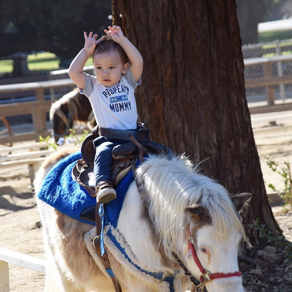 Griffith Park Pony Ride