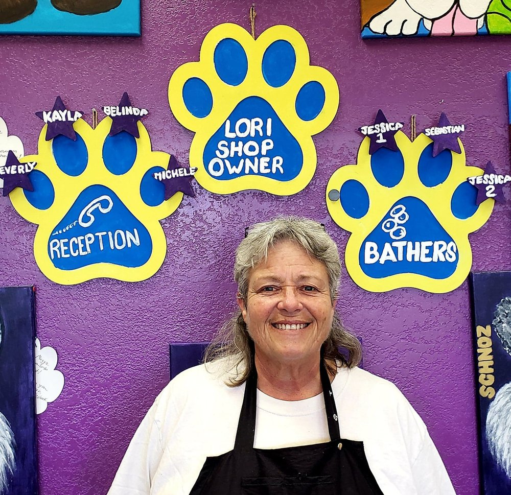 More Than A Groomer: 4960 S Alma School Rd, Chandler, AZ