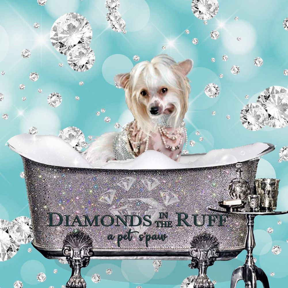 Diamonds in the Ruff: 1785 Herndon Ave, Clovis, CA