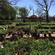 Red Barn Garden Center 46 Photos 47 Reviews Nurseries Gardening 12881 Pond Springs Rd