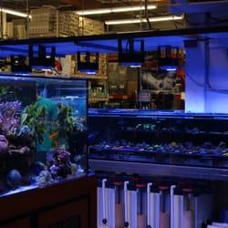 Aquatic Warehouse - 119 Photos & 253 Reviews - Aquarium