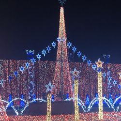 Christmas Miami 2019 Top 10 Best Christmas Lights Display in Miami, FL   Last Updated