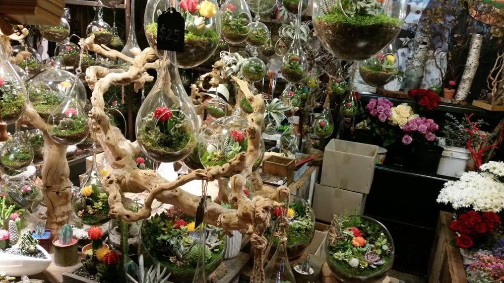 Dewy Flowers