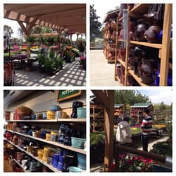 Photo Of Armstrong Garden Centers   Claremont, CA, United States. Outside  Nursery
