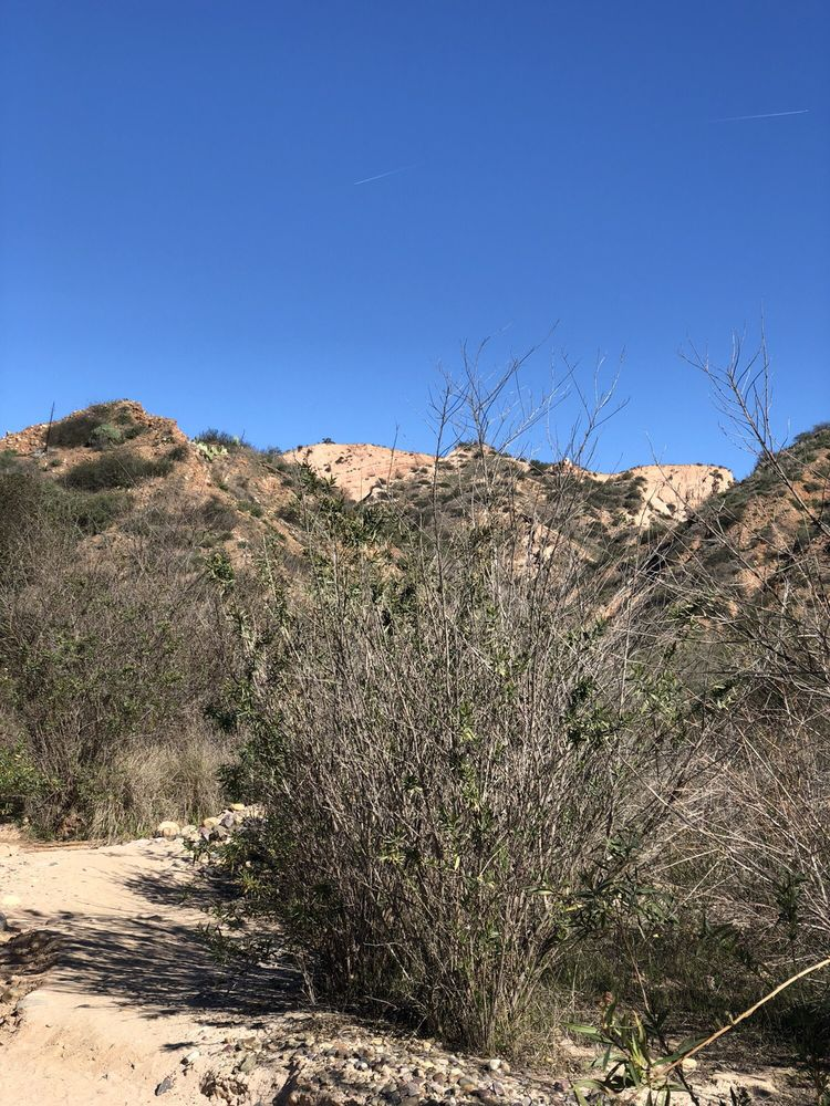 Red Rock Canyon: Red Rock Trl, Lake Forest, CA