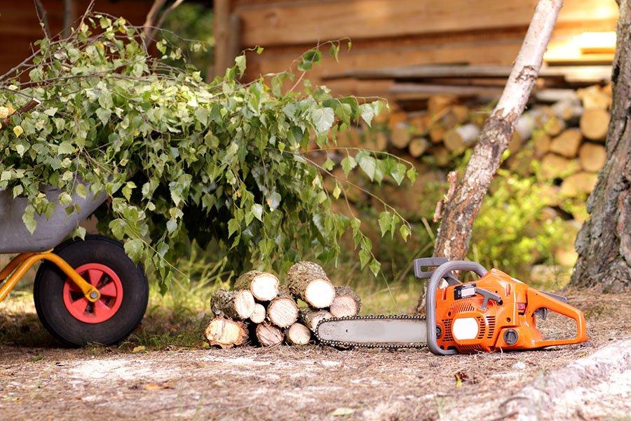 Whorley's Tree Service: Roanoke, VA
