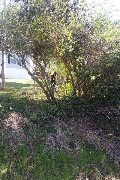 Rodriguez Tree Service: 2315 Walton Rd, Tyler, TX