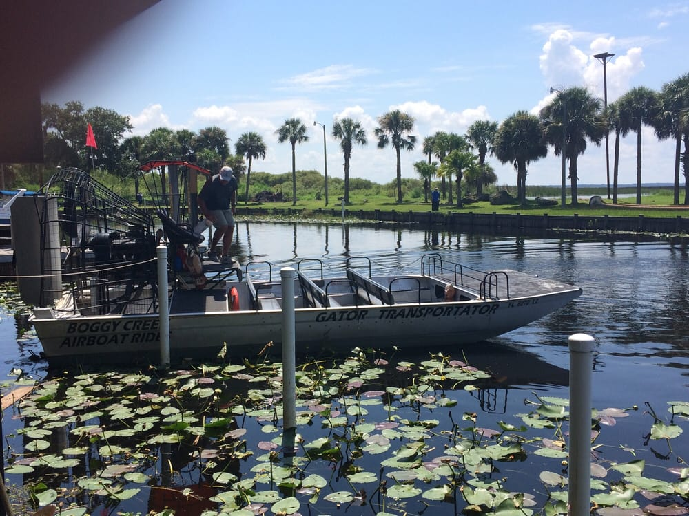Airboat tours kissimmee fl - Forest faces for trees