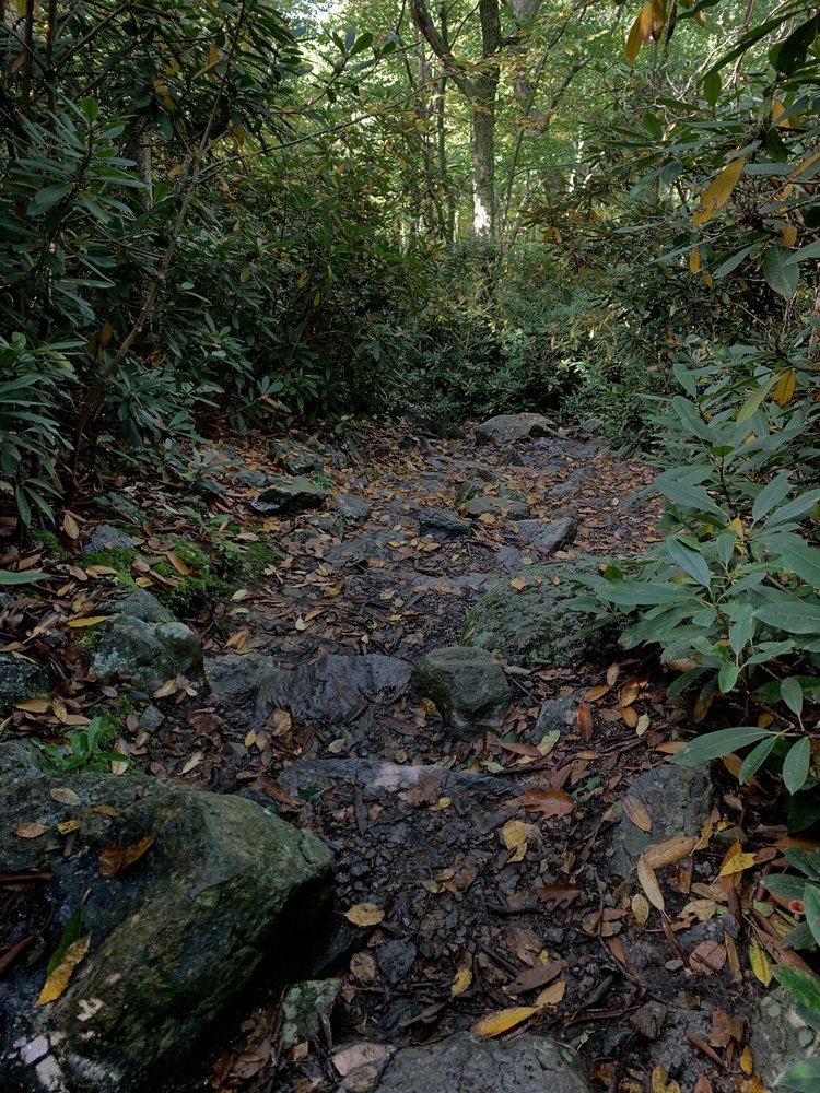 Delaware Water Gap Nra: 3 Walpack Flatbrook Rd, Columbia, NJ