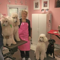 Photo of Fulton's Professional Dog Grooming - Berwyn, PA, United States. Linda and