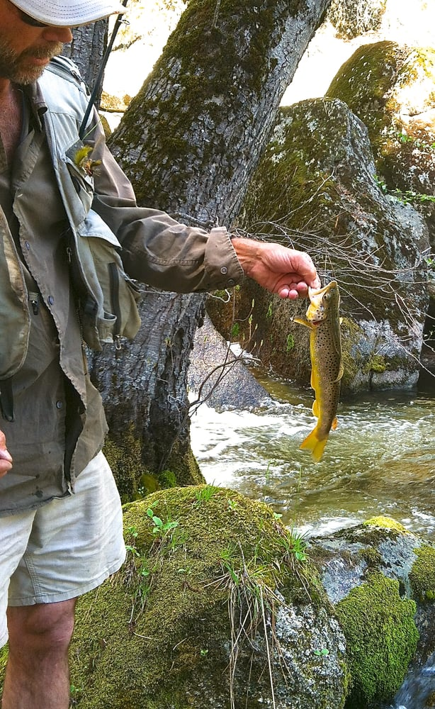 Yosemite Fly Fishing: El Portal, CA
