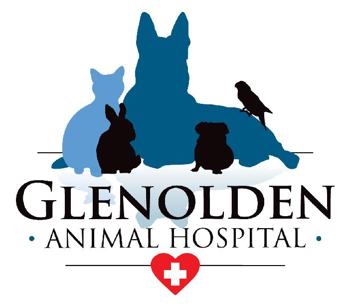 Glenolden Animal Hospital: 405 S MacDade Blvd, Glenolden, PA