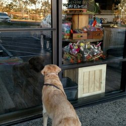 Earthwise pet carlsbad 37 photos 15 reviews pet stores 6986 spa like self wash with everything you photo of earthwise pet carlsbad carlsbad ca united states we are opening solutioingenieria Gallery