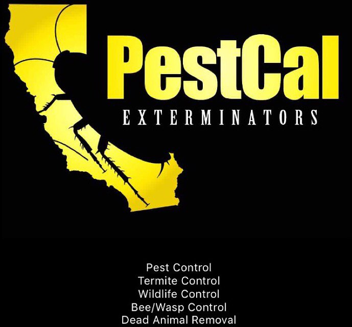 PestCal Exterminators
