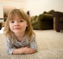 Premier Carpet Cleaning & Restoration: 2301 Maggard Dr, Lexington, KY