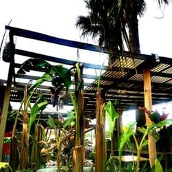 tongs thai restaurant - Delicious Garden